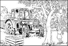 farm animal adult coloring pages - Google Search