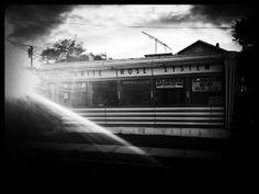 Rose...   Flickr – Compartilhamento de fotos! Motel sama por Luisa Sequeira ´