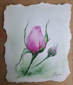 ORIGINAL watercolor painting Rose bud Pink Purple Flower Floral Wall art Contemporary Gift for her Aquarelle painting Mother's day Burned