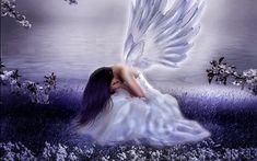 angels wallpaper for desktop background