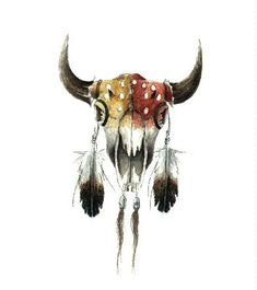 native american buffalo skull art