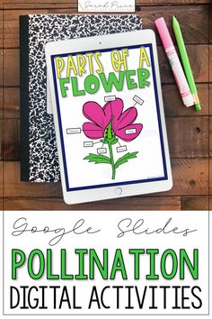 Pollination activities for kids will come to life with these interactive Google Slides. These digital worksheets will be fun for your science elementary class. #distancelearning #2ndgradescience