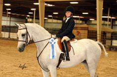 Trained by Amy Wilms Riding Helmets, Youth, Management, Training, Horses, Work Outs, Excercise, Onderwijs, Horse