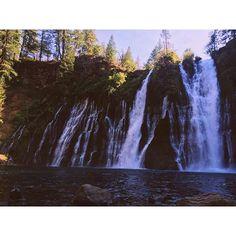 Caliparks : McArthur-Burney Falls Memorial State Park Burney Falls, Local Parks, Park Photos, Park City, Regional, State Parks, Waterfall, Hiking, California