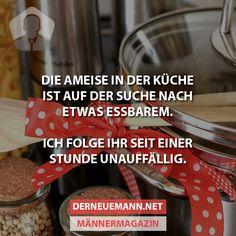 Ameise in der Küche #derneuemann #humor #lustig #spaß