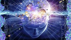 The human brain has a unique way of developing itself. A child's brain develops in phases. During each phase, the basic foundation for a particular brain function – such as visual perception,. Brain Facts, Dna Facts, Pineal Gland, Conscience, Quantum Physics, Highly Sensitive, Sensitive People, Wtf Fun Facts, Random Facts