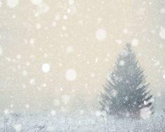 Winter snow snowfall Christmas tree snowy landscape by bomobob Rustic Wall Art, Rustic Walls, Fall Wallpaper, Christmas Wallpaper, Wallpaper Ideas, Winter Pictures, Christmas Pictures, Winter Trees, Winter Snow