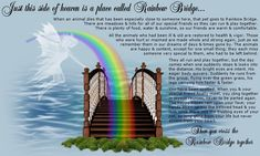 Pet Loss Grief Support Resources at Rainbow Bridge. My Bo, Rainbow Bridge Poem, Pet Loss Grief, Losing A Pet, Over The Rainbow, In Loving Memory, Pet Memorials, That Way, Creatures