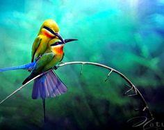 Love Birds :)