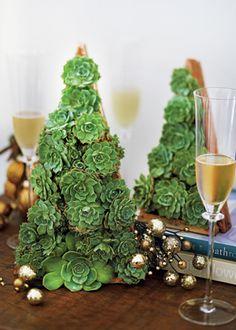 Plantas presas a uma estrutura de madeira formam uma   árvore de Natal.