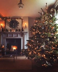 Likes, 55 Comments - 𝖪𝖠𝖳𝖤 𝖣𝖠𝖵𝖨𝖤𝖲 Real Christmas Tree, Christmas Feeling, Christmas Makes, Cozy Christmas, Country Christmas, All Things Christmas, Christmas Holidays, Christmas Decorations, Holiday Decor