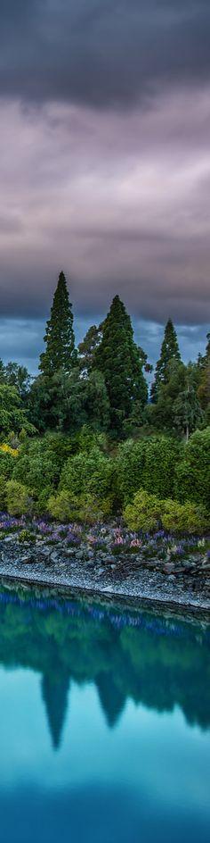 Tekapo, South Island, NEW ZEALAND