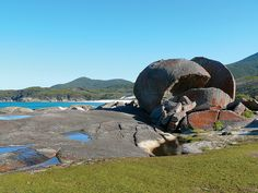 Squeaky Beach at Wilson's Promontory, Victoria, Australia;  photo by IAGD+P, via Flickr.