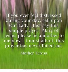 If you ever feel distressed during your day, call upon Our Lady. Just say this simple prayer: Mary of Jesus, please be a mother to me now. I must admit, this prayer has never failed me.