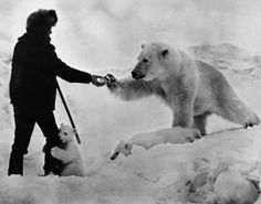 Shooting a bear doesn't make you a badass. Feeding one while her cub humps your leg definitely does