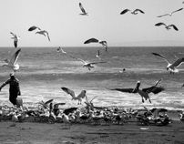 Fishermen of Curanipe, Chile by Anik Polo, via Behance