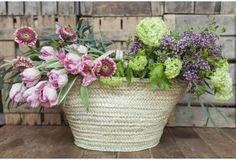 Capazo grande con flores Spring Day, Love Flowers, Bloom, Basket, Birds, Garden, Pink, Florists, Home Decor