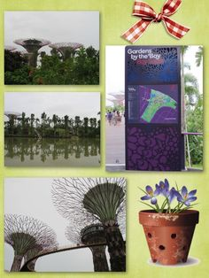 Gardens By The Bay - cloudy day