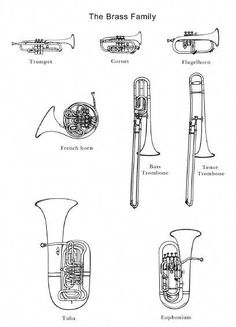 The brass family! Images would be great to use in an Instruments of the Orchestra unit. Music Lessons For Kids, Music For Kids, Piano Lessons, Instruments Of The Orchestra, Brass Band Instruments, Brass Instrument, Music Worksheets, Piano Music, Cc Music