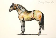 """""""Autumn"""" Watercolor Iberian horse by Lullaby Equine Art"""