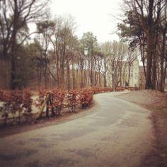 De weg naar Bosrijk