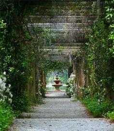 Airlie Gardens.. Wilmington, NC