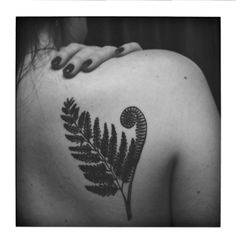 Fern tattoo in a very cool, more traditional style