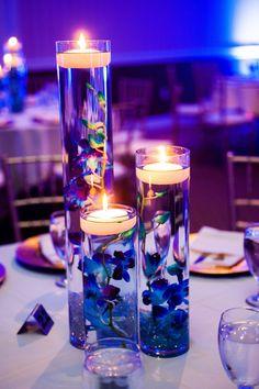 how often do orchids bloom Blue Wedding Decorations, Blue Wedding Centerpieces, Quince Decorations, Quinceanera Centerpieces, Orchid Wedding Theme, Royal Purple Wedding, Cobalt Blue Weddings, Wedding Flowers, Blue Orchid Centerpieces