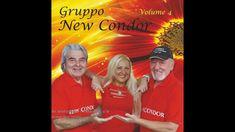 Gruppo New Condor - Se telefonando / Pensando a te (cover)
