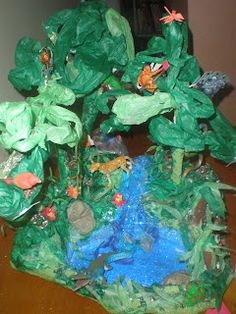 How to Make a Rain forest in a Shoe Box - School Project (Kevin's ...