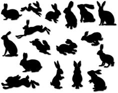 Image result for silhouette rabbit