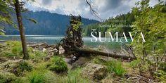 Cestujeme Šumavou - portál o Šumavě, dovolené a aktivitách na Šumavě