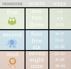Since I always have a hard time converting weeks..... BabyList Trimester - Month- Week Conversion Chart