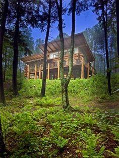 Modern Cabins On Pinterest Cabin Scandinavian