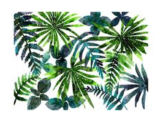 """""""rainforest"""" - Limited Edition Art Print by Cass Loh in beautiful frame options and a variety of sizes. Leaf Prints, Canvas Art Prints, Wall Murals, Wall Art Decor, Different Shades Of Green, Photoshop, Wall Art For Sale, Dark Blue Color, Canvas Frame"""