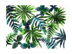 rainforest Wall Art Prints by Cass Loh | Minted