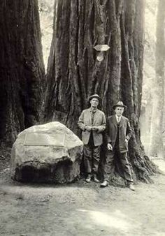 Muir Woods National Monument - Old black & white photograph of William Kent (donor & benefactor of Muir Woods) & Stephen Mather (1st Director of the National Park Service) standing next to a large boulder with a plaque about Gifford Pinchot. The redwood tree they are leaning on was dedicated to Gifford Pinchot, The redwood tree name as the Pinchot Tree may be seen today.