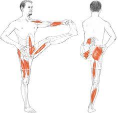 Utthita Hasta Padangusthasana - Extended Hand-Toe Posture via @LKAMINOFF #Yoga #Anatomy