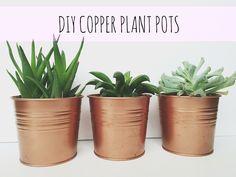 Superbe Diy_copper_pots. Pot PlantsPlant PotsOutdoor OfficeCopper ...