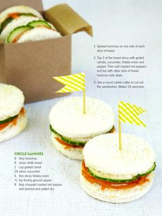 picnic/ healthy circle sammie's for kids