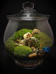terrarium schädel