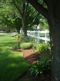 Super backyard landscaping along fence curb appeal 64 ideas Landscaping Along Fence, Outdoor Landscaping, Outdoor Gardens, Landscaping Ideas, Acreage Landscaping, Landscaping Software, Mulch Ideas, Farmhouse Landscaping, Modern Landscaping