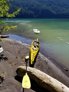 Kayak Storage Rack, Canoe And Kayak, Canoeing, Outdoor Storage, Frames On Wall, Surfboard, Indoor Outdoor, Skiing, Tips