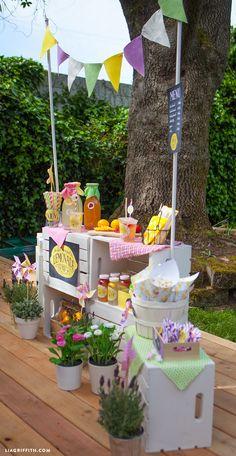 Kids_Lemonade_Stand_Party_DIY
