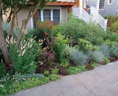 front yard garden - no mowing! There's a small patio closer to the house, screened by the streetside garden.
