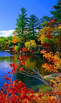 Solve Autumn Trees jigsaw puzzle online with 60 pieces Beautiful World, Beautiful Places, Beautiful Pictures, Beautiful Nature Wallpaper, Beautiful Landscapes, Fall Pictures, Nature Pictures, Landscape Photography, Nature Photography