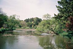 from arboretum / around magazine vol.14 / photograph by parksuna
