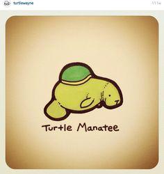 Turtle Manatee