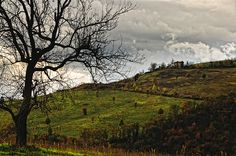Colori autunnali by sdhaddow, via Flickr