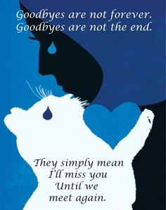 Goodbyes are not forever......